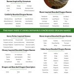 Bearded dragon names infographic