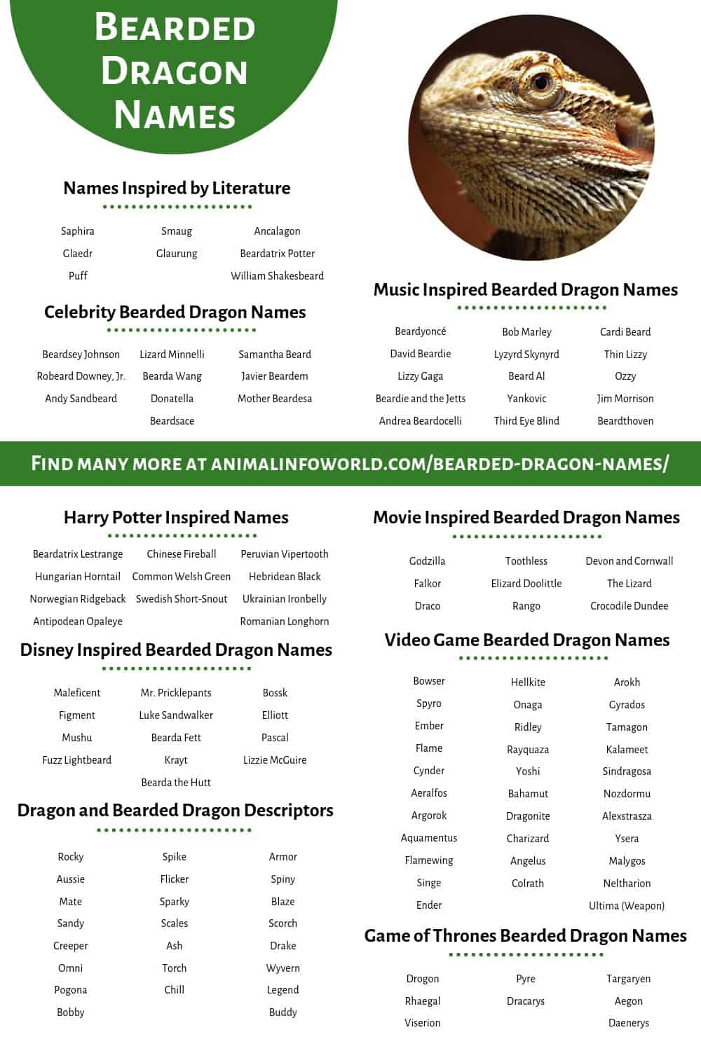 200 Bearded Dragon Names - The only list you'll need