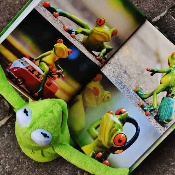 Kermit Reading Frog Book