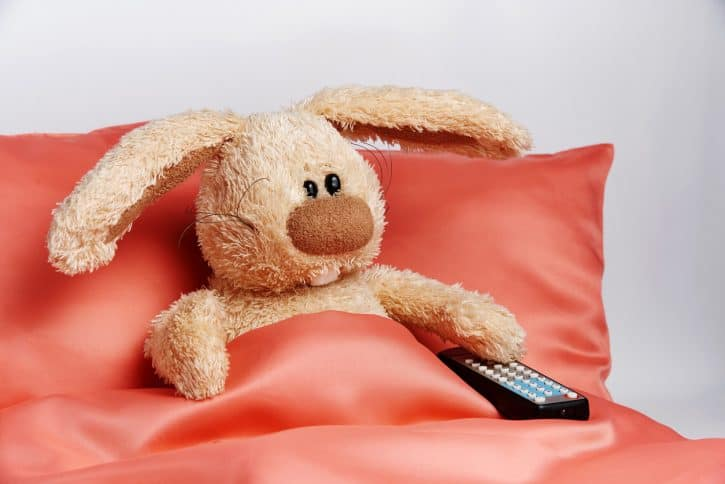 Stuffed bunny holding remote